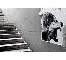 Paris - The wild stairs. Photographic Print