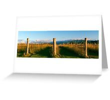 Outback mountain and vineyard in the Scenic Rim, Queensland. Greeting Card
