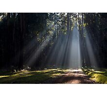 I see the light... Photographic Print