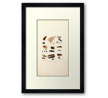 Coloured figures of English fungi or mushrooms James Sowerby 1809 0971 Framed Print