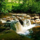 Sunlit Falls by Trevor Kersley