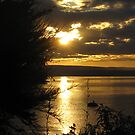 Sunset over Lake Taupo - New Zealand by Kim  Lambert