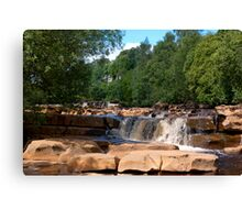 Wain Wath Force #1 Canvas Print