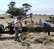 Hay baling by Janette Anderson