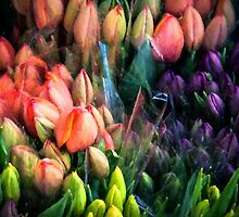 Painted Tulips by Marylou Badeaux
