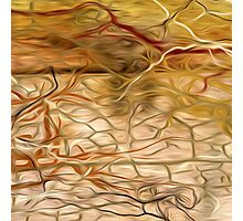 Abstract Colors Oil Painting #60 Photographic Print