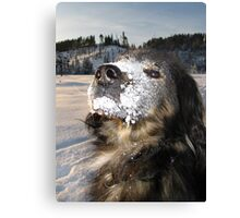 chico the snow monster Canvas Print