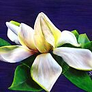 "Gardenia 12"" x 9"" Oil Pastel & Colored Pencil Painting with Blue Violet Background - ""Tranquility"" by Laura Bell"
