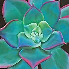 """Opulence,"" Pastel on Ampersand Pastelbord, 8"" x 10"" - Vibrant Succulent Plant of All Colors.  Aeonium Decorum 'Kiwi' by Laura Bell"