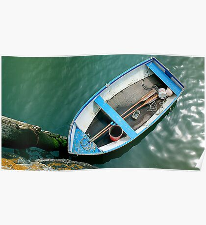 Small boat with paddles Poster