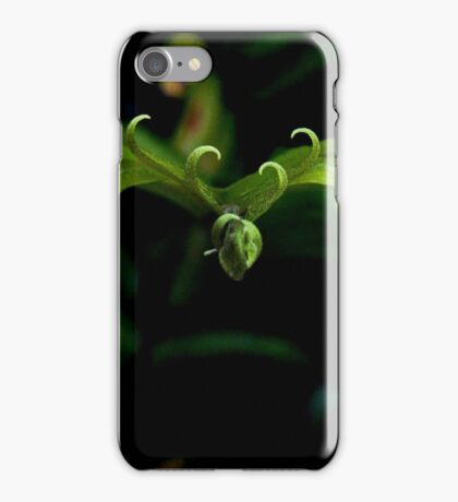 Plantation Fern iPhone Case/Skin