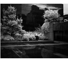 Court House Photographic Print