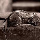 Mouseman Mouse Robin Hoods Bay by Mark Dobson