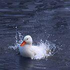 The Splasher by iamelmana