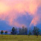 Evening In The Yellowstone by Richard Murch