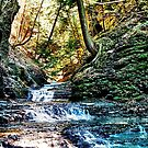 Lick Brook Gorge by AlGrover