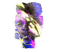 Wave Function Of Self by Phil Drury