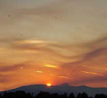 Sunset and homebound crows by Rod Raglin