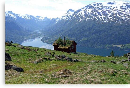 Welcome  by Annbjørg  Næss