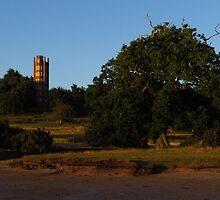 The Freston Tower and Oak Tree by wiggyofipswich