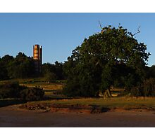 The Freston Tower and Oak Tree Photographic Print