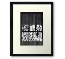 Window Lace Framed Print