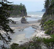 Oympic Peninsula ~ Ruby Beach  by Lucinda Walter