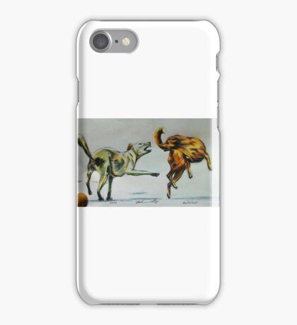 Fire & Ice iPhone Case/Skin