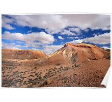 The Painted Hills. Poster