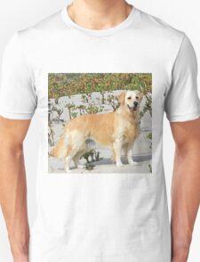 Sand Dune Sami T-Shirt