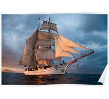 New Zealand tall ship cruise  Poster