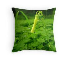 oxalis pes-caprae. Throw Pillow