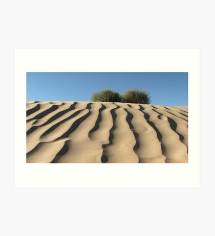 Dune Shrubs Art Print