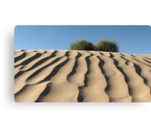 Dune Shrubs Canvas Print