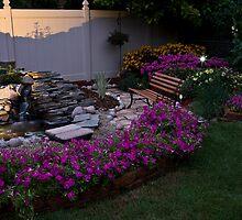 My Evening Garden by Adam Bykowski