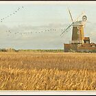 Reeds and Windmill, Norfolk by almaalice