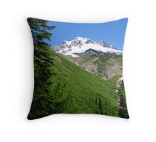 Alive with Color...Mt Hood, Oregon  Throw Pillow