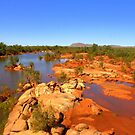 Ashburton River Western Australia by Doug Cliff