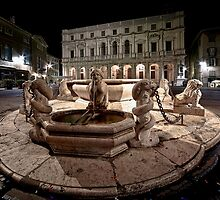Bergamo: Fountain and Public Library by Luca Renoldi