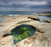 Rock Pool At Howick Bay by Brian Kerr