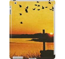 On the Lonely Shore iPad Case/Skin