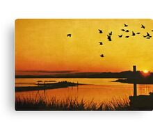 On the Lonely Shore Canvas Print