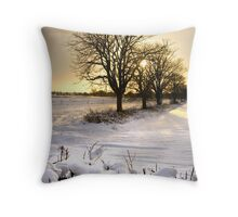 The sun setting on a winter's day Throw Pillow