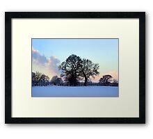 January brings the snow... Framed Print