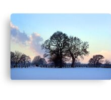 January brings the snow... Canvas Print