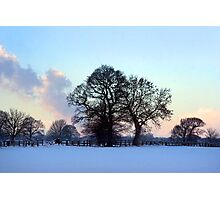 January brings the snow... Photographic Print