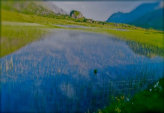 Fairy  -  tale  blue & verdure  landscape . My ..❤‿❤  Norway. Lofots. by Brown Sugar . Favorites: 4 Views: 357. Thx!+ by AndGoszcz