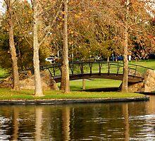 A lovely bridge by grace1993