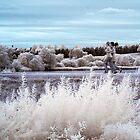 Jogging on planet IRth by George Parapadakis (monocotylidono)