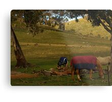 A Late Afternoon Rural Scape Metal Print